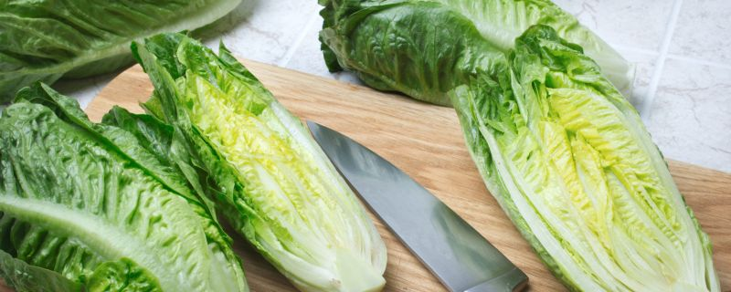 E.coli Contaminated Romaine Lettuce Strikes Again